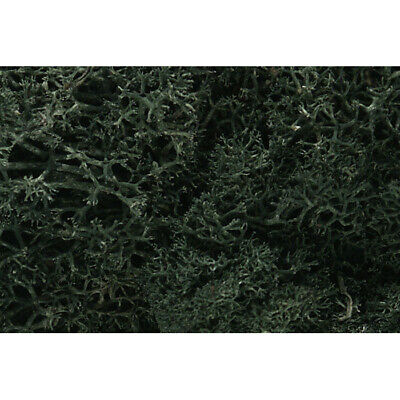 NEW Woodland Scenics Lichen Dark Green 1.5 Quarts L164