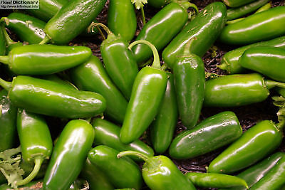 Hot Pepper - Chilli - Jalapeno - Appx 300 seeds - Vegetable