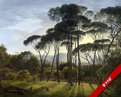 Italian Umbrella Pine Landscape Scene Fine Art Painting Real Canvas 8X10 Print