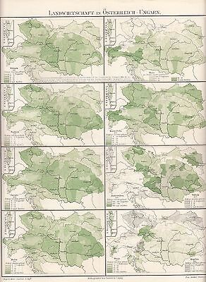 1890 AGRICULTURE in AUSTRIA HUNGARY EMPIRE CZECH SLOVAKIA POLAND Antique Map