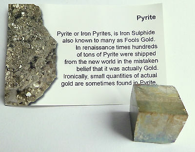 PYRITE CUBE ~ 10-15mm ~ with small information card