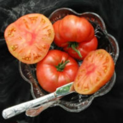 Vegetable - Tomato - Marianna's Peace - 15 Seeds