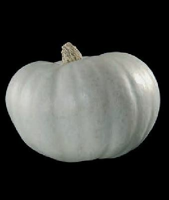 Vegetable - Winter Squash - Crown Prince - 25 Seeds - Large