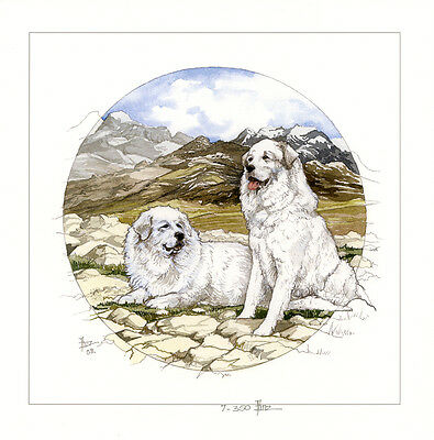 PYRENEAN MOUNTAIN DOG GREAT PYRENEES CHIEN MONTAIGNE ART LIMITED EDITION PRINT