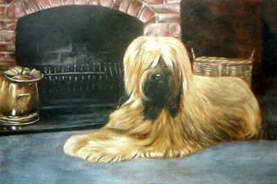 "BRIARD BERGER de BRIE DOG FINE ART LIMITED EDITION PRINT ""Home Comforts"""