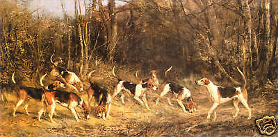 FOXHOUND FOX HUNTING THE BLANKNEY HOUNDS I (Giant) by Heywood Hardy