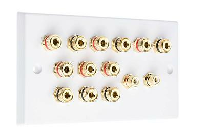 6.2 White Speaker Audio Wall Face Plate NO SOLDERING REQUIRED