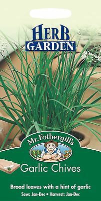 Mr Fothergills - Pictorial Packet - Herb - Garlic Chives - 300 Seeds