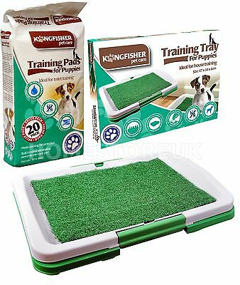 Dog Puppy Potty Training Absorbent Pads Or Plastic Toilet Litter Tray Grass Mat