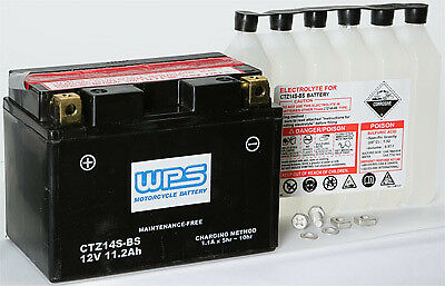 WPS Sealed AGM Battery CTZ14S-BS 49-2295