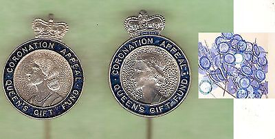 #bb.  50 Queen Elizabeth Ii Coronation Pins