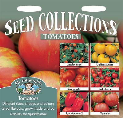 Mr Fothergills - Pictorial Packet - Vegetable - Tomato Collection - Seeds