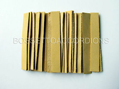 Accordion REED LEATHER LEATHERS VALVES SET OF 24 Size 3 Ventile für Akkordeons