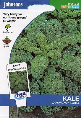 Johnsons Pictorial Pack - Vegetable - Kale Dwarf Green Curled - 400 Seeds