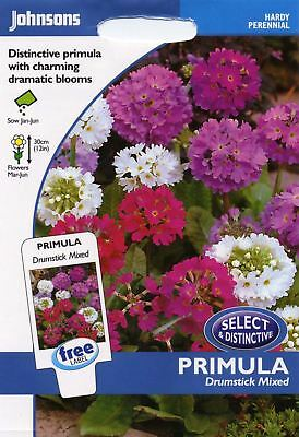 Johnsons Seeds - Pictorial Pack - Flower - Primula Drumstick Mixed - 250 Seeds