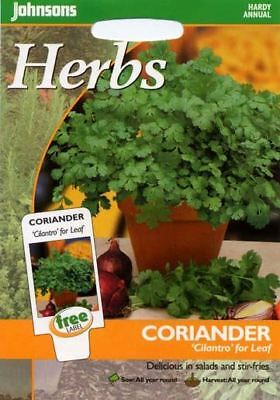 Johnsons Seeds - Pictorial Pack - Herb - Coriander Cilantro for Leaf - 150 Seeds