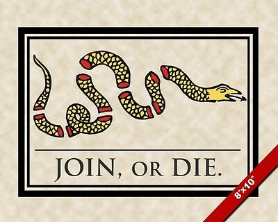 Join Or Die Snake Revolutionary War 1776 Gadsen Flag Us History Canvas Print New