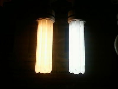 The Wait Is Over~Dual Spectrum 4U 100W Bulbs Are Here 6500K&2100K In One Gro*cfl