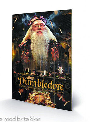 PYRAMID HOLZDRUCK - HARRY POTTER DUMBLEDORE - 40x60 cm - WALL ART POSTER - NEU