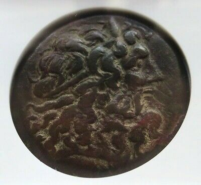 222 - 205/4 Bc Bronze Ptolemaic Kingdom Ae34 Ptolemy Iv Ngc Choice Fine 5/5 3/5