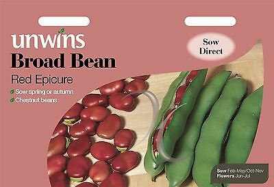 Unwins Pictorial Packet - Vegetable - Broad Bean Red Epicure - 45 Seeds