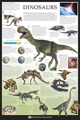 Dinosaurs Poster (61X91Cm) Educational Wall Chart Picture Print New Art