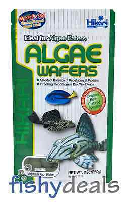 Hikari ALGAE WAFERS 250g Troical Sinking Catfish / Pleco Fish Food Pellets