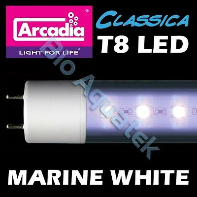 Arcadia Classica T8 LED Lamp Tube Light - Marine White - Convert Fluorescent T8