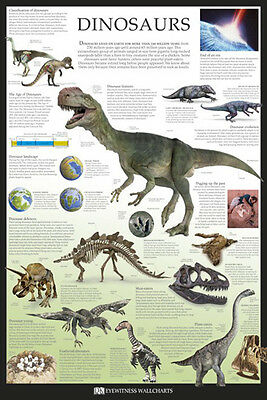 (LAMINATED) Dinosaurs POSTER (61x91cm) Educational Wall Chart Picture Print New