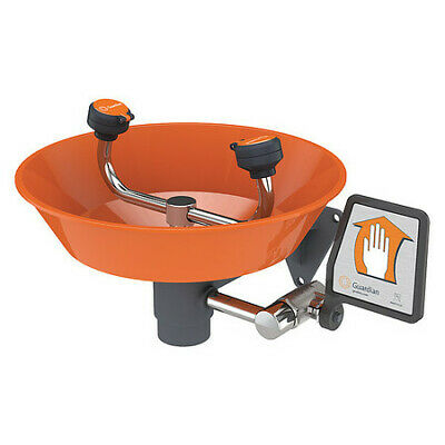 GUARDIAN EQUIPMENT G1814P Wall-Mounted Eyewash Station with ABS Plastic Bowl in