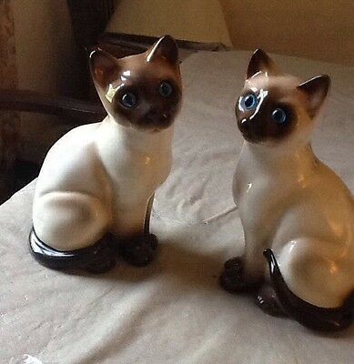Eneoco Siamese Cat  Figurines 2