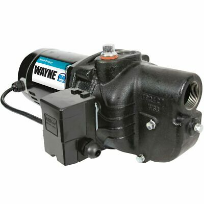 Wayne SWS100 - 1 HP Cast Iron Shallow Well Jet Pump