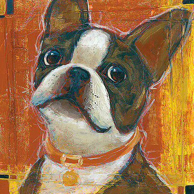 Boston Terrier Dog Fine Art Print