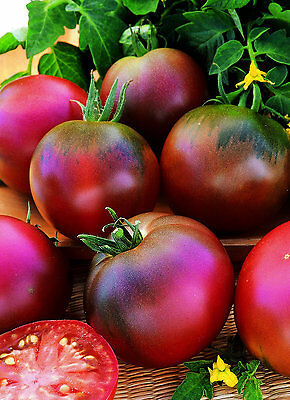 Vegetable - Tomato - Black Russian - 100 Seeds