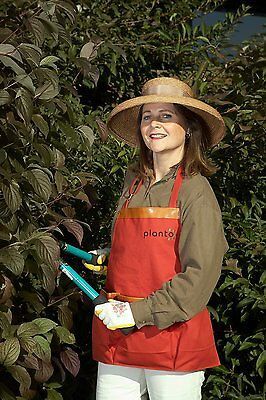 Cotton Apron w/3 Pockets  for Pruning, Dead Heading & Blackberry, Apple Picking