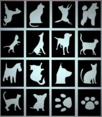 CATS & DOGS glitter tattoo stencils,Great Designs for fundraising etc, Pack 32