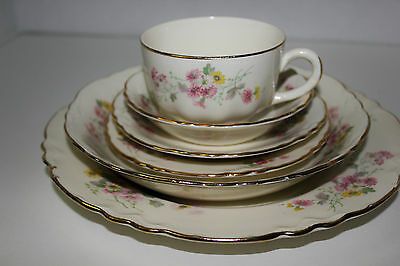 HOMER LAUGHLIN MULTI COLOR DAISIES  6 PIECE PLACE SETTING