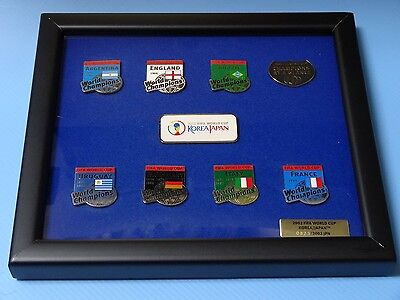 FIFA World Cup 2002 CHAMPION AT A GLANCE Limited Edition PIN Set