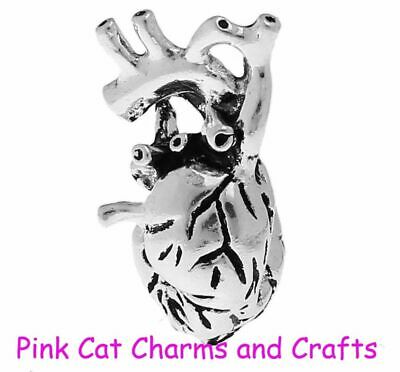 2 x HEART ANATOMICAL SCIENCE Tibetan Silver 3D Charms Pendants Beads