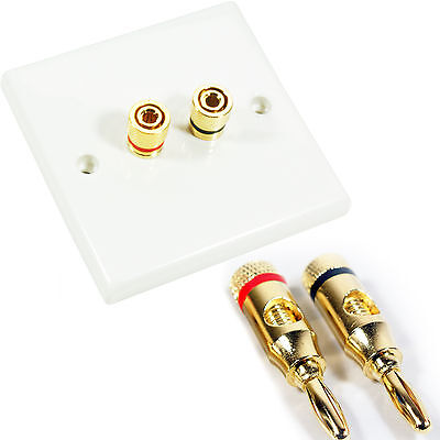 2 Port Speaker Wall Face Plate & 2x 4mm Banana Plugs – Binding Post Gold Speaker