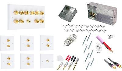 Dolby 5.1 Audio Speaker Wall Face plate Contractors kit - Delux Version