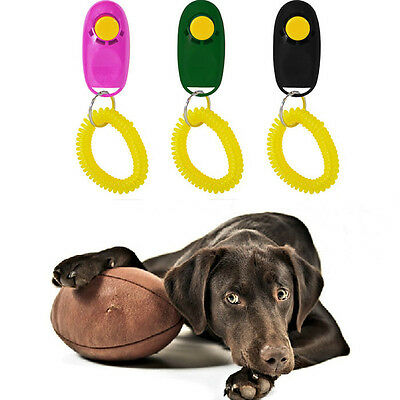 Pet Dog Puppy Training Trainer Clicker Click Wrist Strap Toy Randomly