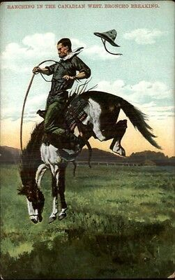 Cowboys Ranching in the Canadian West Broncho Breaking c1910 Postcard