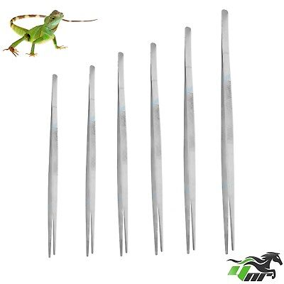 YNR Reptiles Feeding Tongs Tweezers Forceps Hospitals Metal Stainless Steel CE