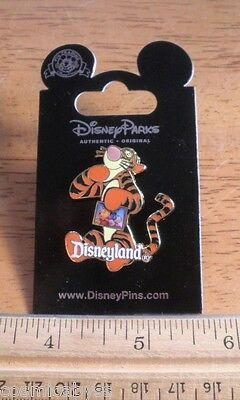 Tigger holding a picture of Winnie the Pooh Disneyland Resort Pin MOC