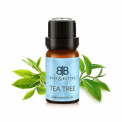 100% Pure TEA TREE Essential Oil 10ml, 30ml, 50ml, 100ml