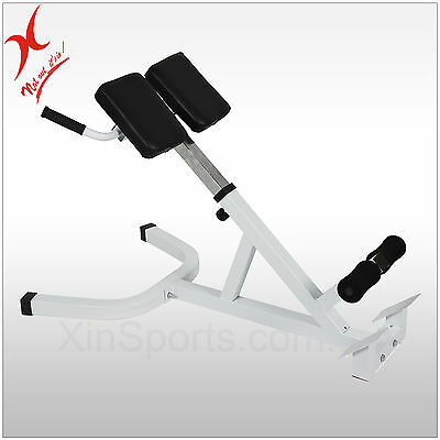 45 Degree - Hyperextension  Roman Chair - Back Hyper Extension