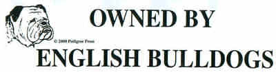 Owned By English Bulldogs Dog Bumper Sticker SALE
