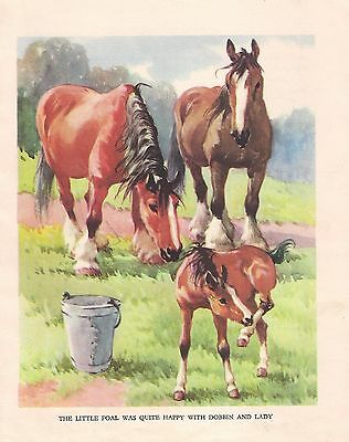 HORSES with foals  1930s CHILDRENS Vintage Art Print A.E KENNEDY