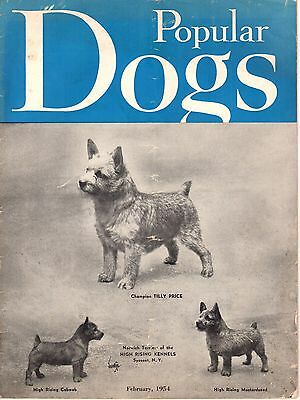 Vintage Popular Dogs Magazine February 1954 Norwich Terrier Cover